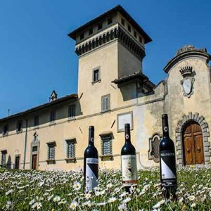 Large Mediterranean style building in field of daisies with bottles of wine in the foreground.